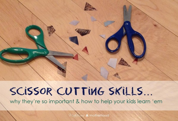 Scissor Cutting Skills: Why They're Important & How to Learn 'em