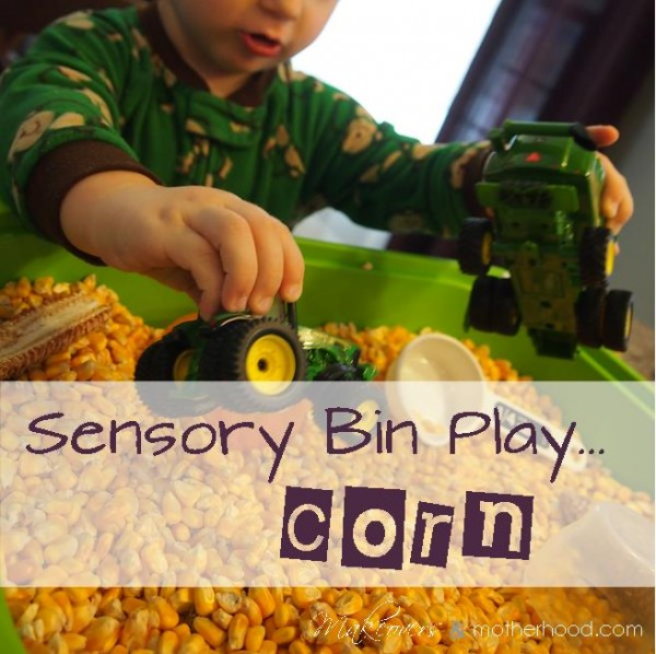 Corn Sensory Bin;  www.makeoversandmotherhood.com