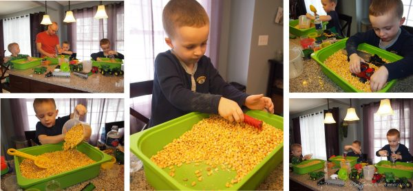 Corn sensory bin play;  www.makeoversandmotherhood.com