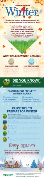 TruGreen winter infographic