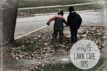 Winter Lawn Care? Tips from TruGreen