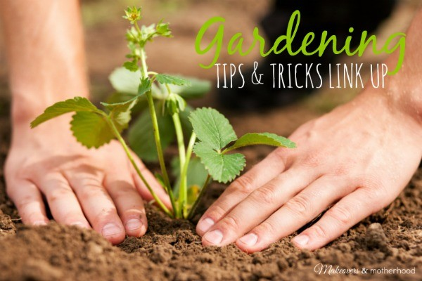 Gardening Link Up; www.makeoversandmotherhood.com